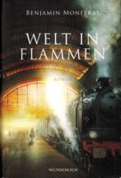 Rezension Welt in Flammen